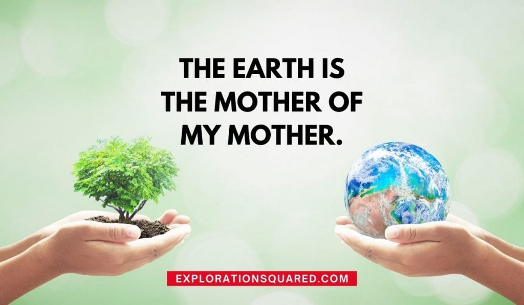 The Earth is the mother of my mother - Quotes