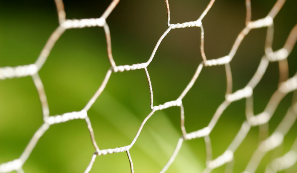 Close up picture of Chicken wire