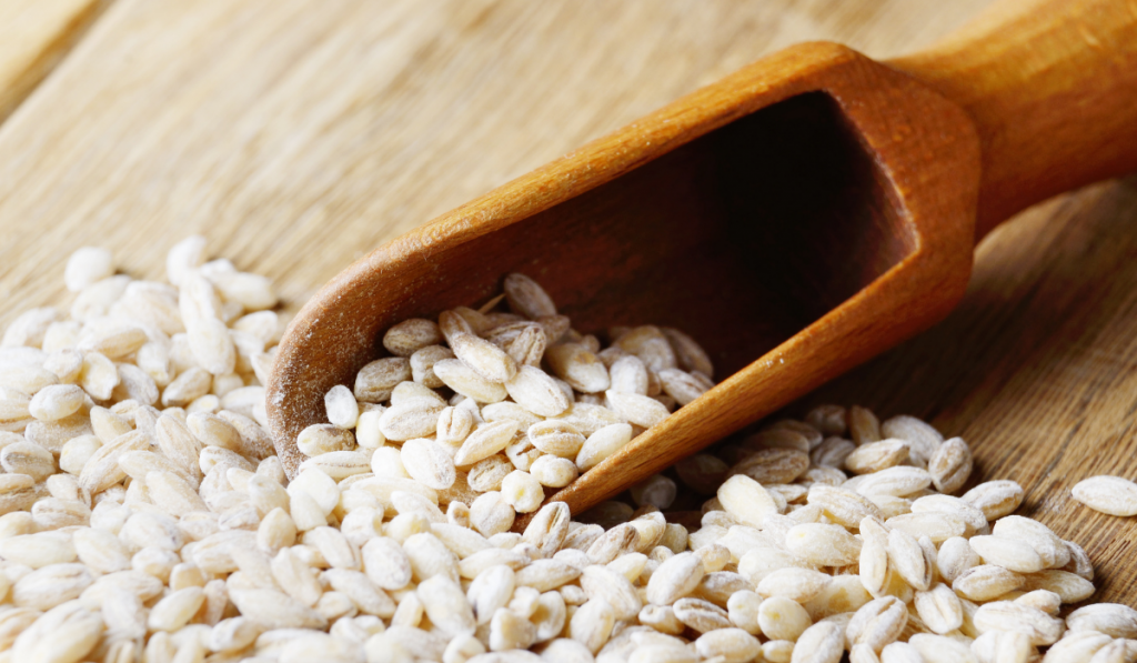 Barley grains on the table with wooden scoop