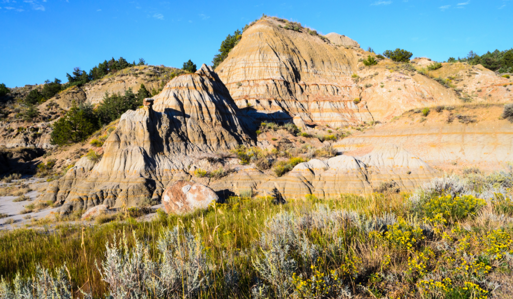 Hills with green bushes on the surrounding at Theodore Roosevelt National Park
